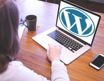 WordPress Themes Development